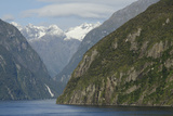 New Zealand  Fiordland National Park  Milford Sound Scenic Fjord