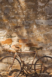 Australia  Clare Valley  Sevenhill  Old Bicycle