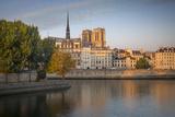 Sunrise over Cathedral Notre Dame and Ile De La Cite  Paris  France