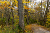 Towpath Trail in Autumn in Cuyahoga National Park  Ohio  USA