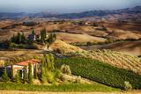Vineyards Surround the Belvedere House