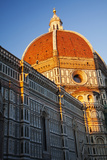 The Duomo of Florence with Evening Light