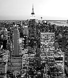 NY Theme II