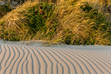 Sand Patterns on the Beach at Cape Blanco State Park  Oregon  USA