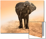 Artistic Rendition Elephant in Dust and Sunglow
