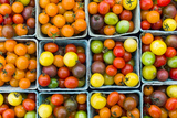 Maine  Rockland  Cherry Tomatoes at Farmers Market