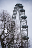 England  London  London Eye  Morning
