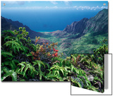 Kalalau Valley from Phihea Trail