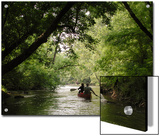 Couple Canoeing under Tree Cover Down the Shenandoah River