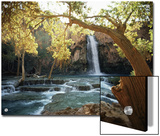 Scenic Waterfall Framed by Trees