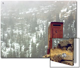 Outhouse Perches on a Hillside