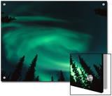Aurora Borealis Swirling in the Night Sky  Alaska