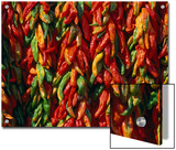Rows of Red and Green Chili Peppers Hang Together in Bunches