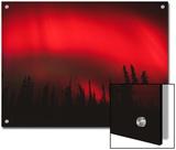 Red Aurora Borealis  Alaska