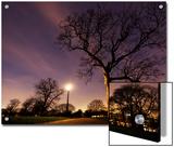 Nightime in Hyde Park  London