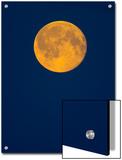 Rising Big Full Moon in a Dark Blue Sky in Autumn