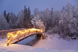 Bridge Decorated with Christmas Lights in a Forest Setting  Southcentral Alaska