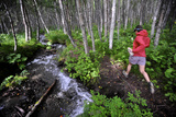 Woman Jogging Through a Birch Forest Alongside a Small Stream  Alaska