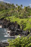 Hawaii  Maui  Hana  the Black Sand Beach of Waianapanapa