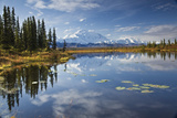 The North Face and Peak of Mt Mckinley Is Reflected in a Small Tundra Pond in Denali National Park