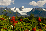 Summer Scenic of Grewingk Glacier and the Kenai Mountains of Kachemak Bay State Park
