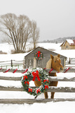 Horse on Soward Ranch Decorated for the Holidays Antelope Valley Creede Colorado Papier Photo par Design Pics Inc
