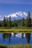 Mt Mckinley Reflecting in Nugget Pond Denali National Park Interior Alaska Summer