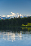 Southside View of Mt Mckinley Seen from Byer's Lake State Park During Summer