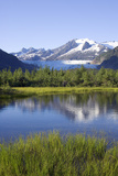 View of Mendenhall Glacier with Pond and Green Grass in Foreground Juneau Southeast Alaska Summer