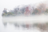 Fall Leaves Peek Through the Morning Fog on the Occoquan River  Near the Potomac River