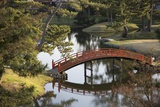 A Footbridge over Water in a Garden