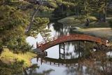 A Footbridge over Water in a Garden