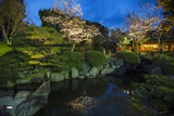 An Idyllic Japanese Garden at a Restaurant  Highlighting Blossoming Cherry Trees