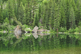 Reflection of Forest and Rocks in Mirror Lake  Near Marble  Colorado