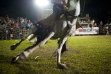 Close Up View of Horses Front Legs as it Stumbles in a Rodeo Arena in Nosara  Costa Rica