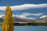 A Fall Scene on Lake Tekapo  South Island