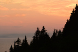 Sunset View of the Gulf of Saint Lawrence and Silhouetted Evergreen Trees
