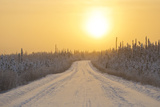 Orange Sky at Sunset over Icy and Snowy Dempster Highway and Forests
