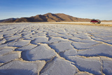 Dry and Cracked Earth Due to Drought Conditions