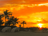A Blazing Fiery Sunset on a Tropical Beach with Palm Trees