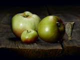 A Roxbury Russet  a Tiny Lady Apple and a Calville Blanc D'Hiver