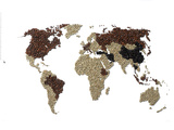 A Map of the World Made with Coffee Beans