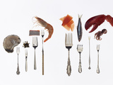 Various Forks Used for Oysters  Caviar  Sushi  Shrimp  Fish  Sardines  Lobster and Octopus