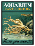 East-London Aquarium - South Africa - Have you seen it - Octopus