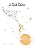 Petit Prince et les Oiseaux Sauvages Reproduction d'art par Antoine De Saint Exupery