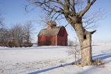 Red Corn Crib in Snow  Genoa  Illinois  USA