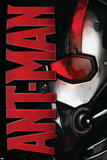 ANT-MAN Wall Decal