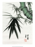 Watercolor of Green Bamboo