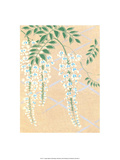 Japanese Textile Woodblock  Wisteria