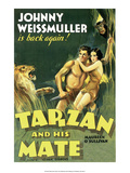 Vintage Movie Poster  Tarzan and his Mate